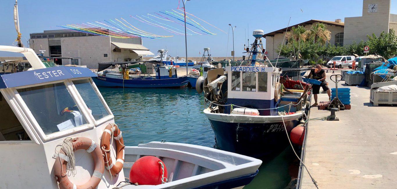 La tonyina roja salvatge del Mediterrani tindrà marca pròpia